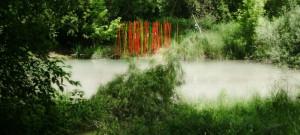 bamboosento nebbia2
